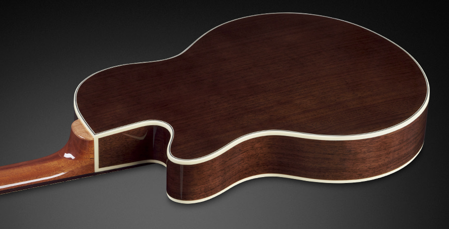 Alien Deluxe Thinline Hybrid 4 - Mahogany Neck and Back